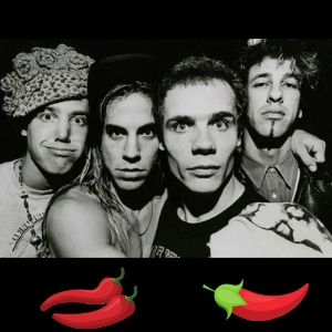 componentes de red hot chilli peppers
