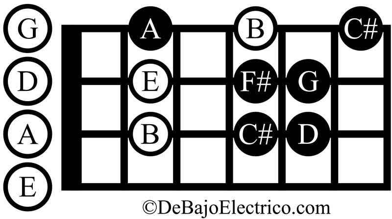b minor scale on bass