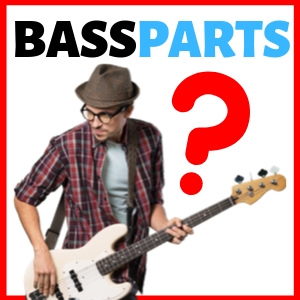 What are the parts of a bass?